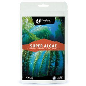 super alge fairy land