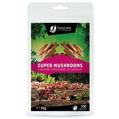 Super gljive - Fairy Land